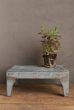 Zinc Garden Pedestal Stand  6x10x14in