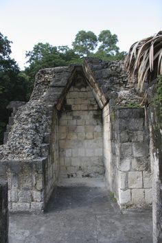 Ceibal, Petén, Guatemala. Maya archaeology.
