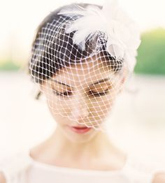 Lila Birdcage Veil with Swarovski Crystal and by hushedcommotion, $205.00