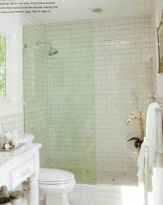 Shower Glass Splash Wall -  for my small master bath?
