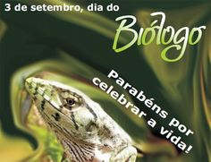 ALEGRIA DE VIVER E AMAR O QUE É BOM!!: DIÁRIO ESPIRITUAL #203 - 03/09 - Esforço