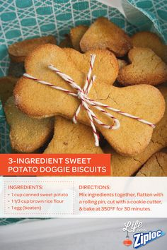 Homemade Sweet Potato Dog Biscuits are like pumpkin pie for pups. Bring some to cookie swaps or holiday dinners in a Ziploc® Holiday container, and you'll be the favorite party guest, paws down. Perfect gift for dog lovers.