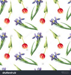 Watercolor Tulips And Irises On White Background. Hand Drawn Seamless Pattern