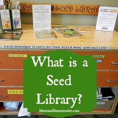 What is a seed library? Learn what it is, how they work and how to start one in your own community to exchange heirloom seeds! | Montana Homesteader