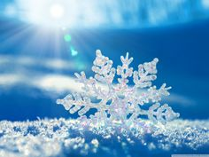 Snowflakes – Impossibly Perfect Designs