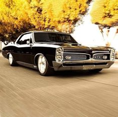 Pontiac GTO The 1967 GTO is considered the 'daddy' when we are talking about old-school muscle cars. Old School Muscle Cars, Chevy Muscle Cars, Old School Cars, Auto Retro, Retro Cars, Vintage Cars, Cadillac Ats, 1967 Gto, 67 Pontiac Gto
