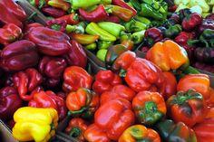 Rare+Veg+Seeds+for+Sale | Organic Pepper Seeds
