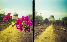 Taken by maximum_b with a Superheadz Golden Half loaded with 200 ISO Kodak film in India.