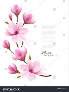 Nature background with blossom branch of pink magnolia and butterfly. vector Nature background with blossom branch of pink magnolia and butterfly. Tattoo Pink, Flor Tattoo, Girly Tattoos, Cherry Blossom Art, Blossom Flower, Flower Art, Flor Magnolia, Magnolia Flower, Mastectomy Tattoo