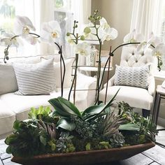My dear friend asked if I could put something together for her large bay window in her kitchen. She already had this extra large antique wood bowl. So I filled it with white orchids and succulents for the win ✔️. I'm delivering it to her this afternoon. Orchid Flower Arrangements, Orchid Centerpieces, Succulent Arrangements, Orchid Pot, Orchid Plants, Indoor Orchids, Orchid Cactus, Orchids Garden, Phalaenopsis Orchid