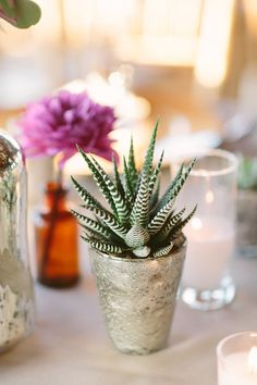 succulent centerpiece, photo by Apryl Ann Photography http://ruffledblog.com/romantic-hickory-street-annex-wedding #weddingideas #centerpieces