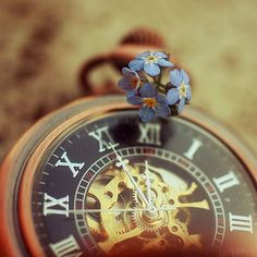 Tick tock forget me not. by simoendli on deviantART