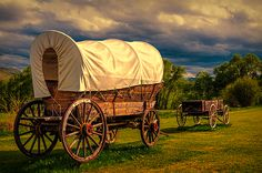 Old Wagons by Maria Coulson