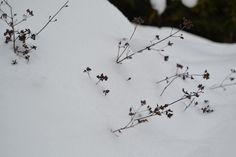 130311_Schnee