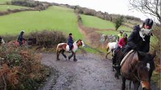 Even though we do this most days, it is so lovely to take people on one of our favourite routes. Camera started on Sierra, then switched to Rodney, and we we. Horse Ears, Horses For Sale, Show Jumping, Cob, Trekking, Jasmine, Jazz, Irish, Ocean