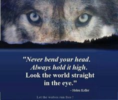 ○Hold  your head high and look the world straight in the eye.