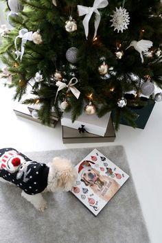 Christmas Wreaths, Christmas Tree, Holiday Decor, Winter, Home Decor, Teal Christmas Tree, Winter Time, Decoration Home, Room Decor