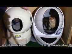 Comparison of Litter-Robot II & Litter-Robot III Open-Air - YouTube