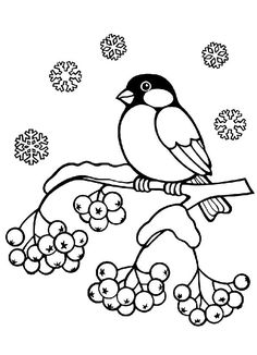 vogelhaus im winter   vögel im winter, ausmalbilder vögel, mandalas tiere