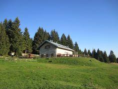 #Malga Campo #Luserna #Trentino