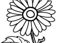 Download 27 Sketsa Gambar Bunga Matahari Untuk Kolase In 2021