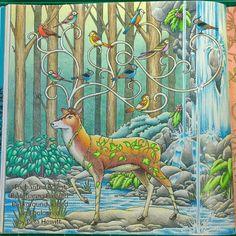 Billedresultat for enchanted forest coloring book colored Enchanted Forest Book, Enchanted Forest Coloring Book, Johanna Basford Books, Johanna Basford Coloring Book, Lost Ocean, Magical Jungle Johanna Basford, Secret Garden Colouring, Diy Y Manualidades, Coloring Book Art