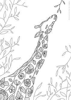 어른 색칠공부 컬러링북 도안 : 꽃기린 ♡ : 네이버 블로그
