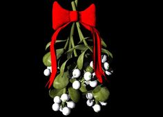 The Life and Times of a Contemporary New England Witch: Mistletoe as part of the Christmas/Yuletide festiv...