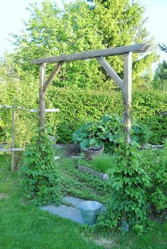 Garden Screening Ideas - Screening could be both ornamental and also useful. From a well-placed plant to maintenance totally free fence, below are some innovative garden screening ideas. Garden Entrance, Garden Arbor, Garden Trellis, Garden Gates, Garden Landscaping, Growing Gardens, Farm Gardens, Outdoor Gardens, Garden Screening