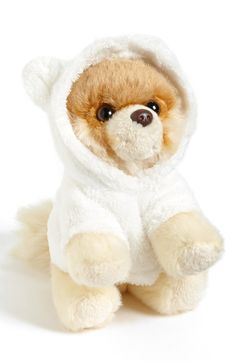 Boo The World's Cutest Dog ~ 'Itty Bitty Boo Bear Suit'