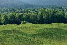 'ripples' on inside of ridge - similar planting, maybe a little taller grasses.  Maya Lin's 2009 earthwork.