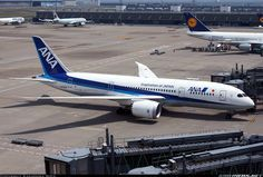 Boeing 787-8 Dreamliner - All Nippon Airways - ANA | Aviation Photo #4682591 | Airliners.net