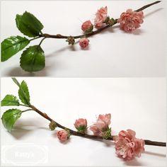 Sugar flower - by Katty