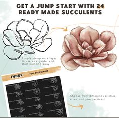 Succulent Builder Procreate Brush Kit - Design Cuts Brush Kit, Echeveria, Guide Book, Art Tips, Planting Succulents, Art Techniques, Cool Designs, Vectors, Make It Yourself