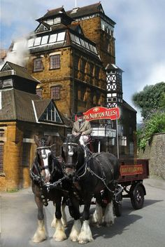 The Hook Norton Brewery, located in the Oxfordshire  Cotswolds has been brewing beer for a little over 150 years and is a family business.  Each week its team of working shire horses  pull the loaded dray to make deliveries to local pubs.