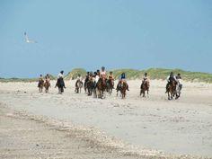 Hvidbjerg Strand Feriepark tilbyder rideture på alle niveauer.
