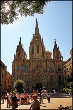 Catesdral de Barcelona, Catalonia, First Cathedral I ever step foot inside.. Beautiful