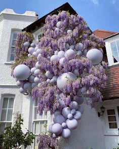 Well if this isnt just the dreamiest scene! Wisteria & balloons make for quite a statement here and we are all for it! Balloon Wall, Balloon Garland, Balloon Arch, Balloon Decorations, Wedding Decorations, Baby Shower Centerpieces, Baby Shower Favors, Shower Baby, Bridal Shower