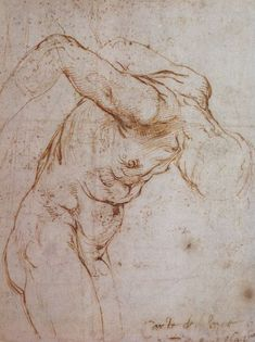 Raphael- Study of a man hanging by his arms c. 1505/1506/ Pen and brown ink