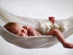 Baby in hammock with it's kitten