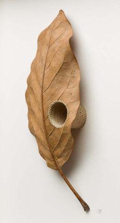 Susanna Bauer Hand Stitches, Nurtures and Embellishes Fallen Leaves