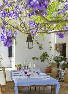 Alfresco dining euro style & look at that Wisteria. Cypress.