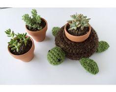"""Crochet Kit - """"World Turtle"""" Succulent Pot Holder"""