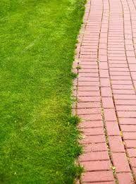 Resultado de imagem para caminho de tijolos no jardim