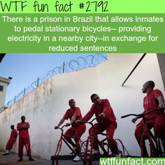 Prison in Brazil that provides electricity to the community - WTF fun facts Wow Facts, Wtf Fun Facts, Funny Facts, Random Facts, Crazy Facts, Random Stuff, What The Fact, Learn Something New Everyday, Disney Secrets