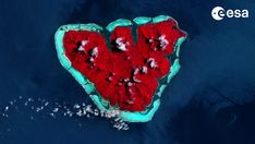 Mother Nature's Valentine: A Heart-Shaped Island Seen From Space Tectonique Des Plaques, Tahiti Nui, Ocean Acidification, Earth View, Latest Discoveries, Plate Tectonics, Earth From Space, Our Planet, South Pacific