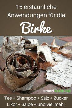 Die Birke hat viel zu bieten - 15 erstaunliche Anwendungen