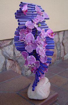 Orchids by Rvformacio