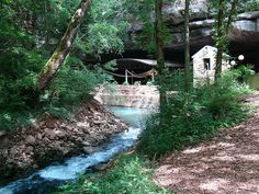 """Before the river flows into the cave, there are a few sections that can be viewed from the surrounding woods. The most notable is the """"blue hole"""" - a bright blue pool that is 16 feet deep. Today, the area on the edge of the cave and river is used as an event space and the starting location for tours. But this appealing spot was once used as a night club, from the 1930s until it closed its doors in 1962. Unfortunately, the river and the land around it then became a dumping site until 1997…"""