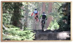 california mammoth mountain bike park